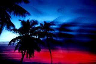 Alan Maltz sunset