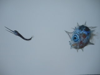 Eyeball fish