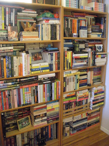 Bookshelves before