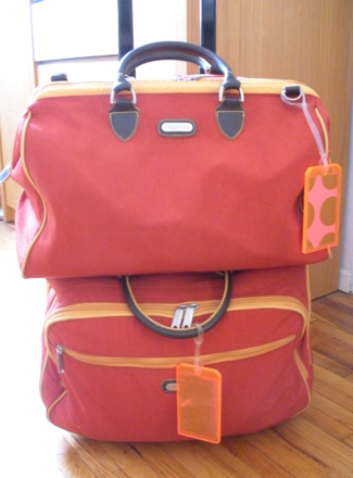 My Baggallini bags are made of awesome