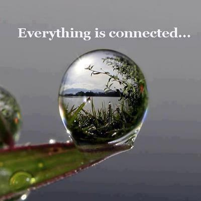 Everything is connected...