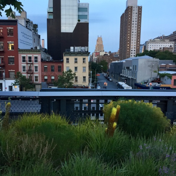 The High Line, New York City, June 2017